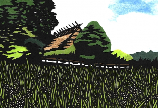 Ibaraki Ricefield