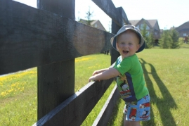 baby at a fence