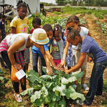image of children gardening