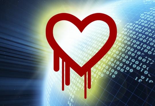 Bleeding heart and binary code
