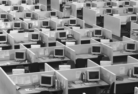 Rows of office cubicles