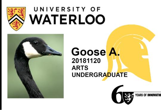 Mr. Goose WatCard example