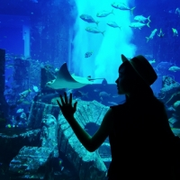 Girl by a marine tank