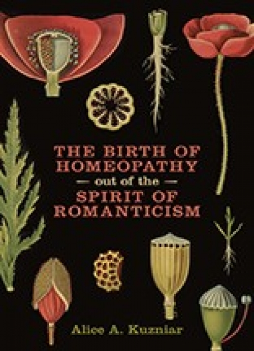 Cover of The Birth of Homeopathy Out of the Spirit of Romanticism