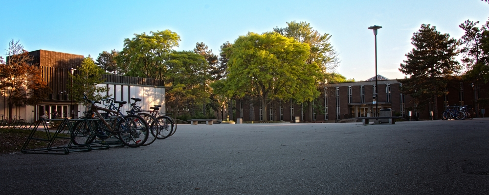 bikes parked in Arts quad at sunset