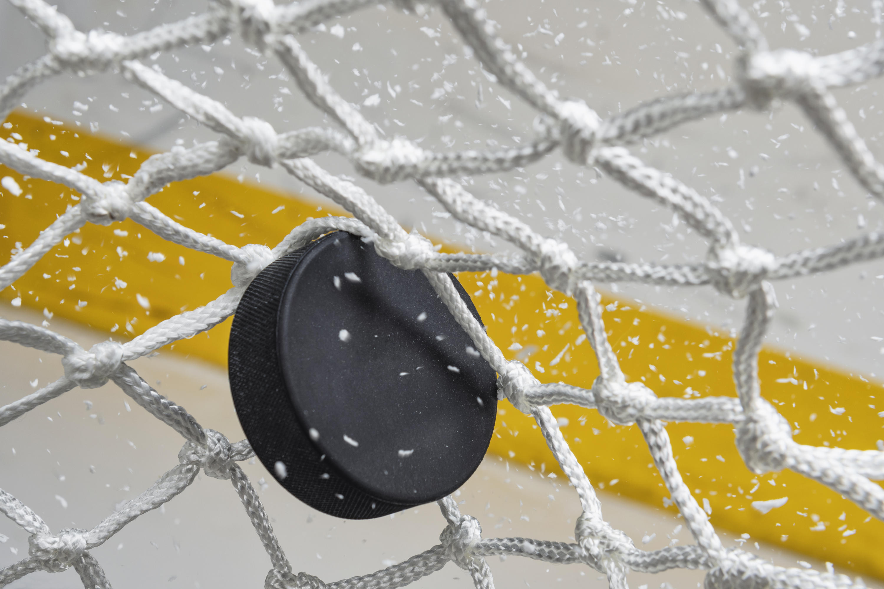 hockey puck in goalie net