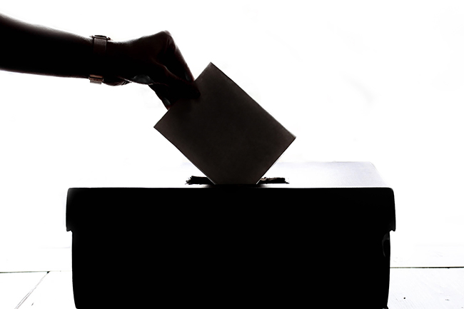 A person puts their vote in the ballot box