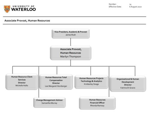 Associate Provost, Human Resources, Organizational Chart