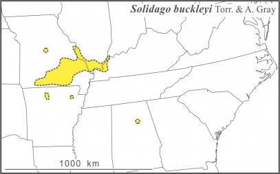 Solidago buckleyi range draft JCS