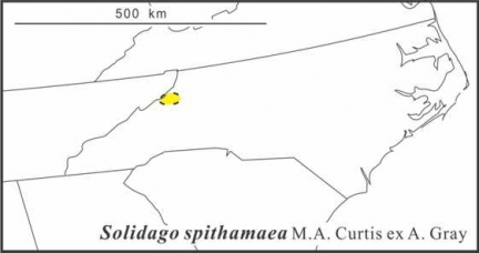 Solidago spithamaea range draft JCS