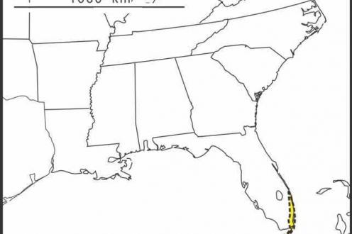 Solidago chrysopsis range Semple draft
