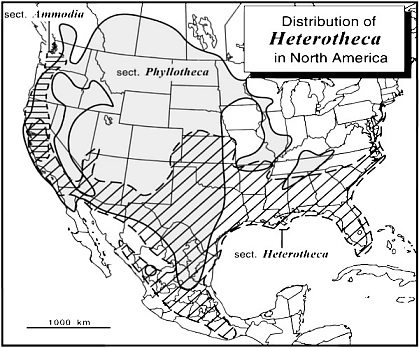 Distribution of Heterotheca in North America