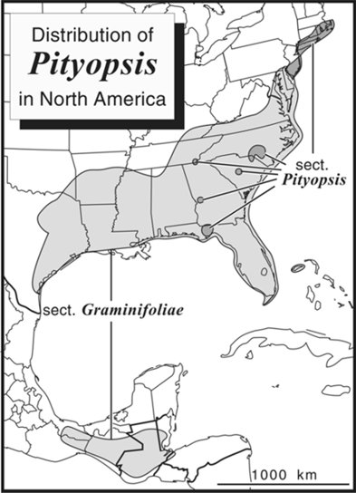Distribution of Pityopsis in North America