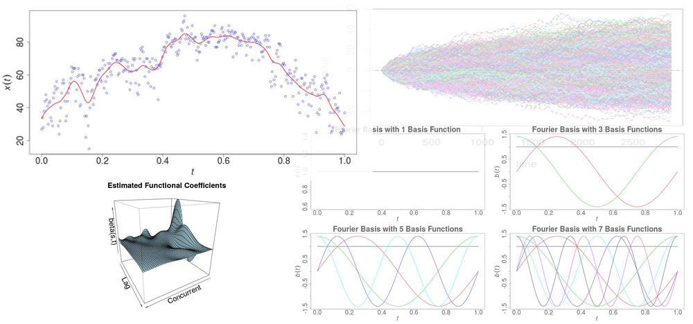 Functional Data anaysis