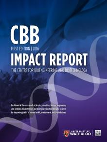 CBB Impact Report