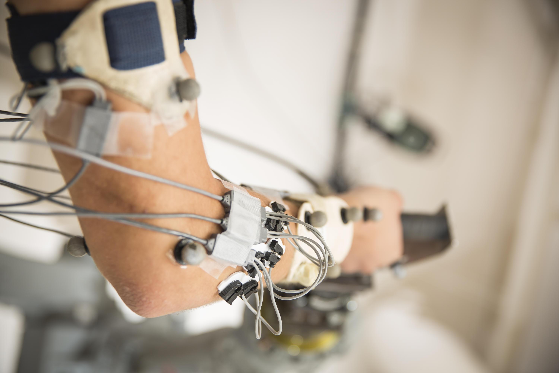Balance Motor Control And Biomechanics Centre For Bioengineering Electrical Wiring Arawh