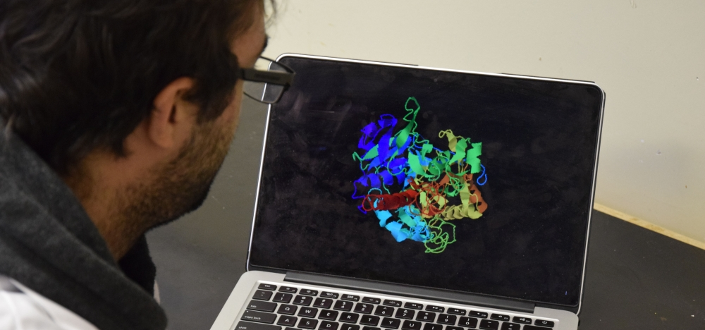 Grad student looks at a protein model on a laptop
