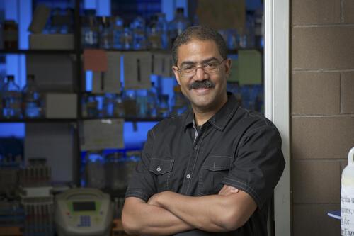 Professor Trevor Charles