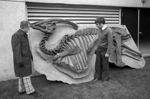 Frank Brookfield and Peter Russell with a fossil of Parasaurolophus.
