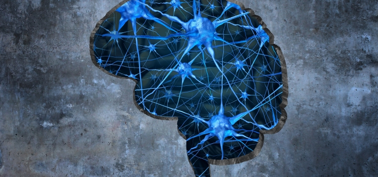 Istock illustration of a brain with neurons.