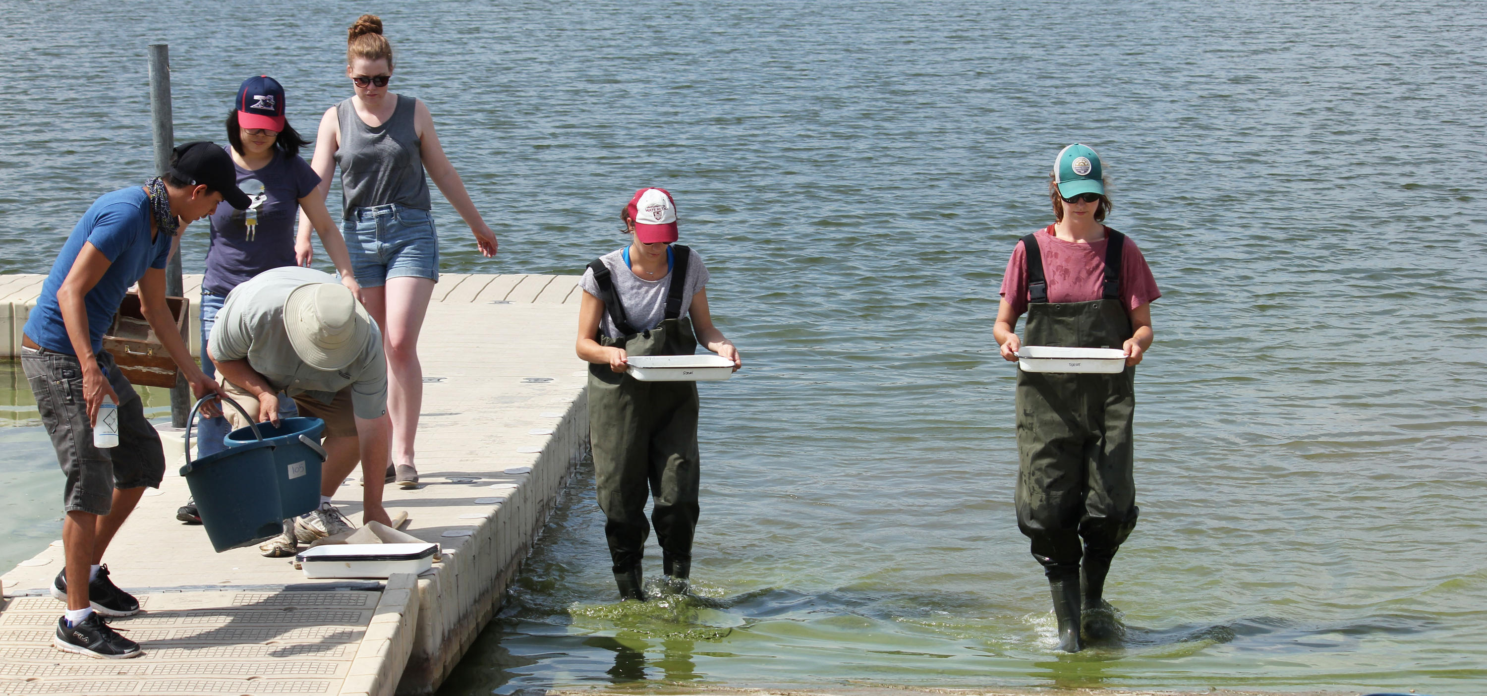 Water Collaborative Students sampling on a shoreline.