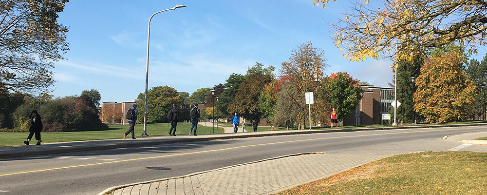 Waterloo Campus in the fall.