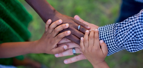 Parent and children's hands together.