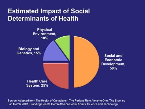 Pie chart estimating costs of the social determinants of health