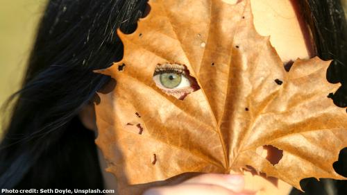 woman peeking from behind leaf