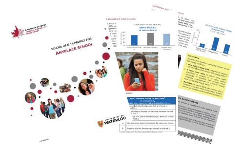 Three pages of the school health profile shown as an example.