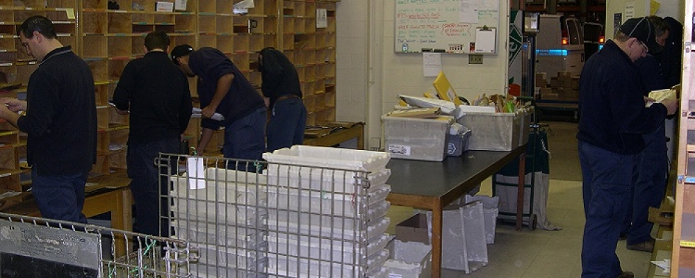 Staff members sorting mail.