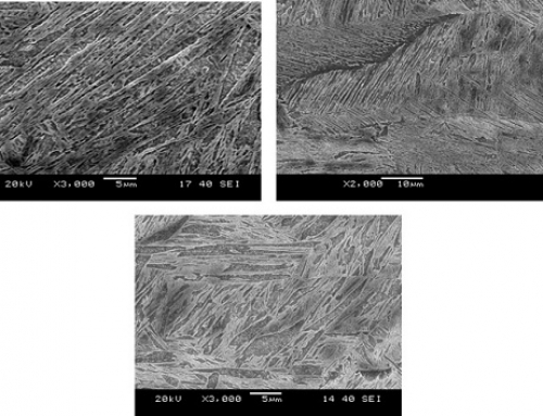 Fusion zone microstructure developed in fiber laser welding of similar and dissimilar combination LWBs of DP980 and HSLA steels