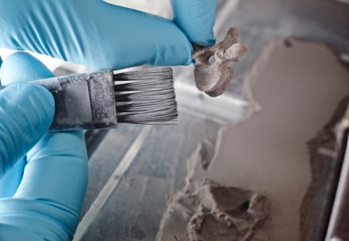 Person cleaning off an artificial vertebrae from a mold.