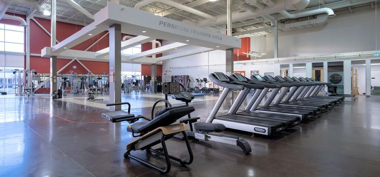 Main gym in the Toby Jenkins Applied Health Research Building