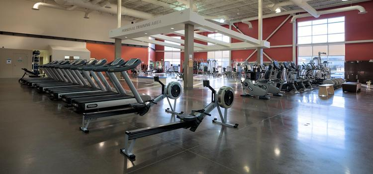 Main gym in the Toby Jenkins Applied Health Research Building.