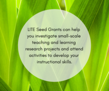 LITE Seed grants can help you investigage small-scale teaching and learning research projects and attend activities to help deve