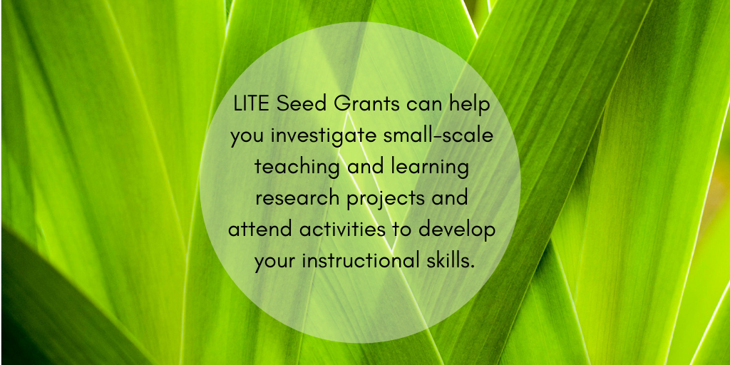 "<img alt=""LITE Seed Grants can help you investigate small-scale teaching & learning research & develop your instructional skills"