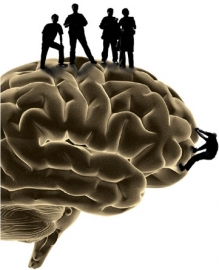 silhouette of a brain with people standing on top of it