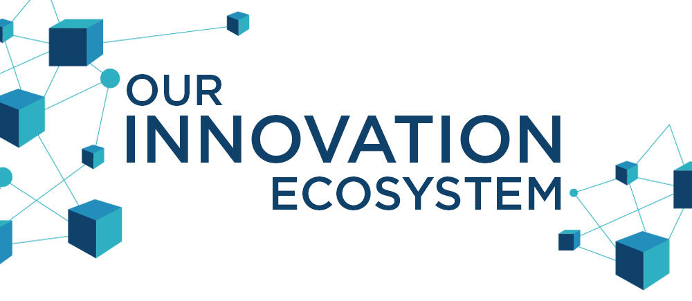Our innovation ecosystem
