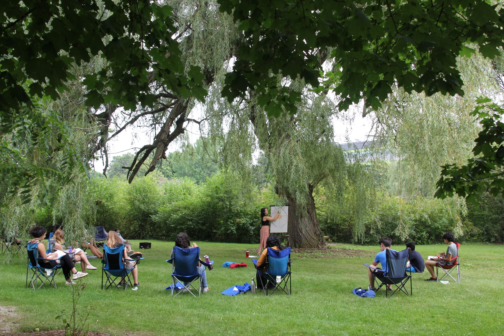 students sit under tree and learn