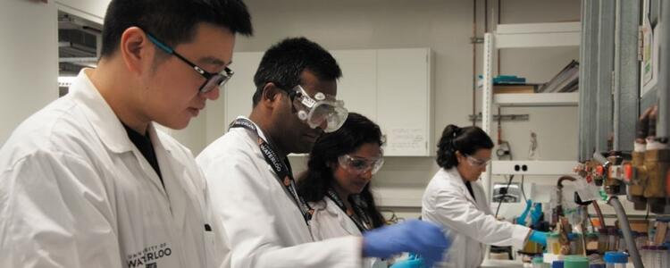Four of Professor Tam's graduate students, working in a lab.