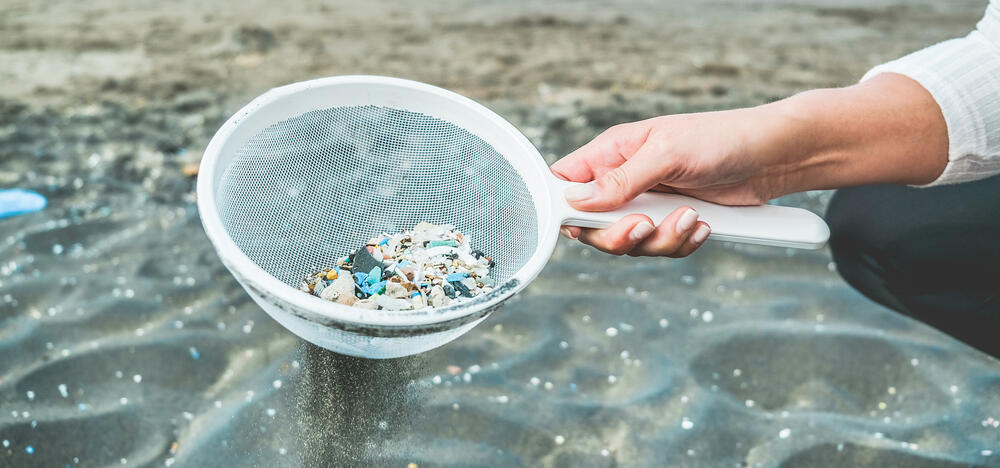 plastics collected from a beach