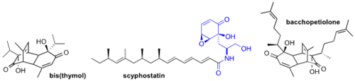 line drawings of bis(thymol), scyphostatin, and bacchopetiolone molecules