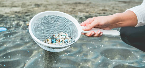 plastics collected from a beach.