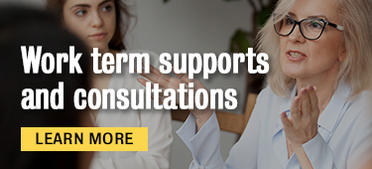Work term supports and consultations