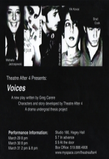 Voices Poster