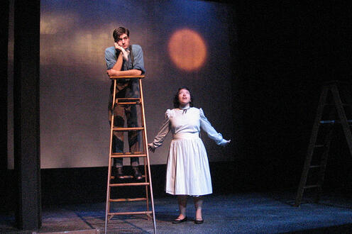 Man on a ladder with a woman standing next to him