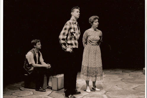 Taming of the Shrew photo