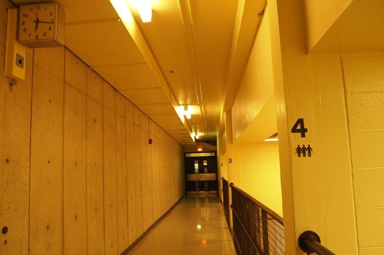 Vinyl decal on wall in hallway
