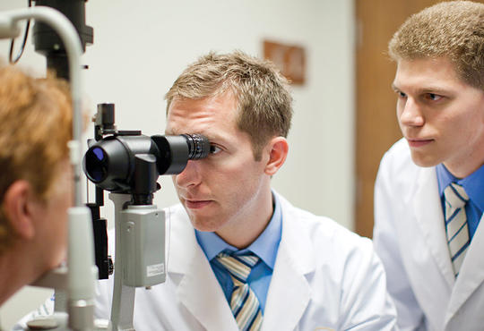 Students working in the School of Optometry